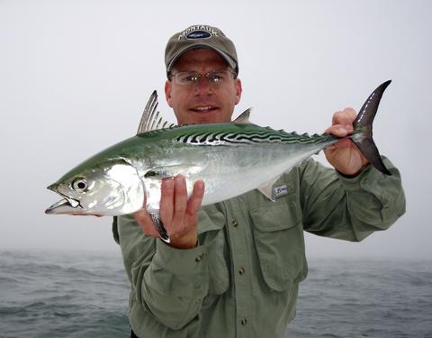 Fishing the montauk blitz long island ny 29 sep for Long island sound fishing report