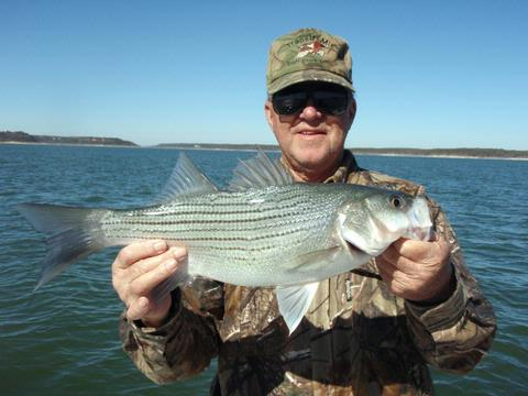January 2009 fishing report for Belton lake fishing
